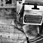 I dettagli (in)influenti in un racconto