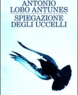 """Tecniche di riscaldamento / """"Spiegazione degli uccelli"""" di António Lobo Antunes"""