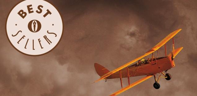 """""""Il volo del calabrone"""" di Ken Follett"""